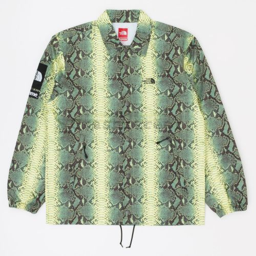 The North Face Snakeskin Taped Seam Coaches Jacket in Green