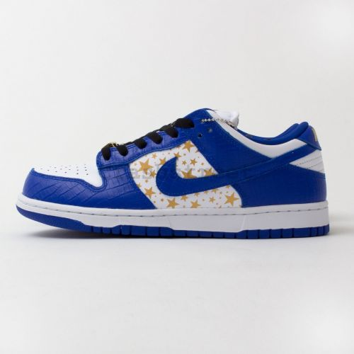Nike Dunk Low SB in Blue