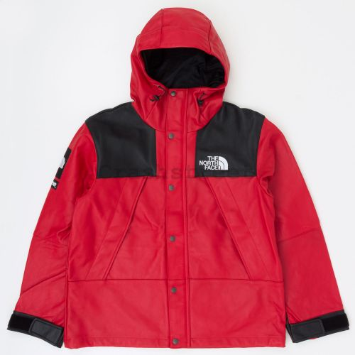 The North Face Mountain Leather Jacket
