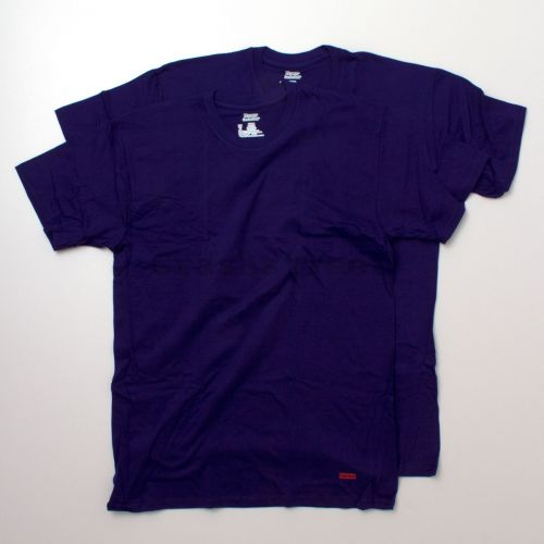 Hanes Tagless Tee (2 Pack) Purple in Purple