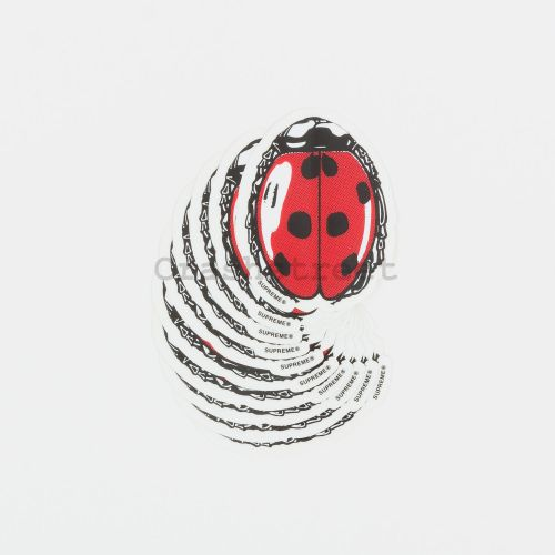 Ladybug Sticker Set of 10