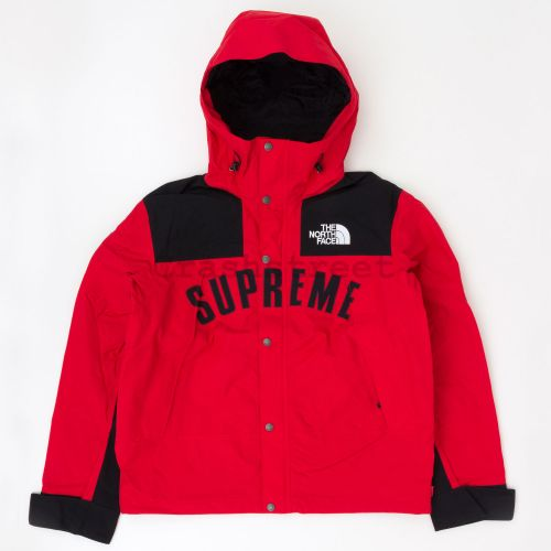 The North Face Arc Logo Mountain Parka - Red