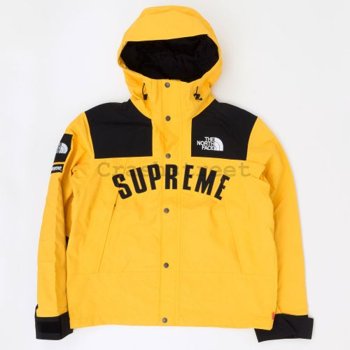 The North Face Arc Logo Mountain Parka in Gold